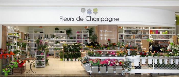 Fleurs de Champagne - Slide de base
